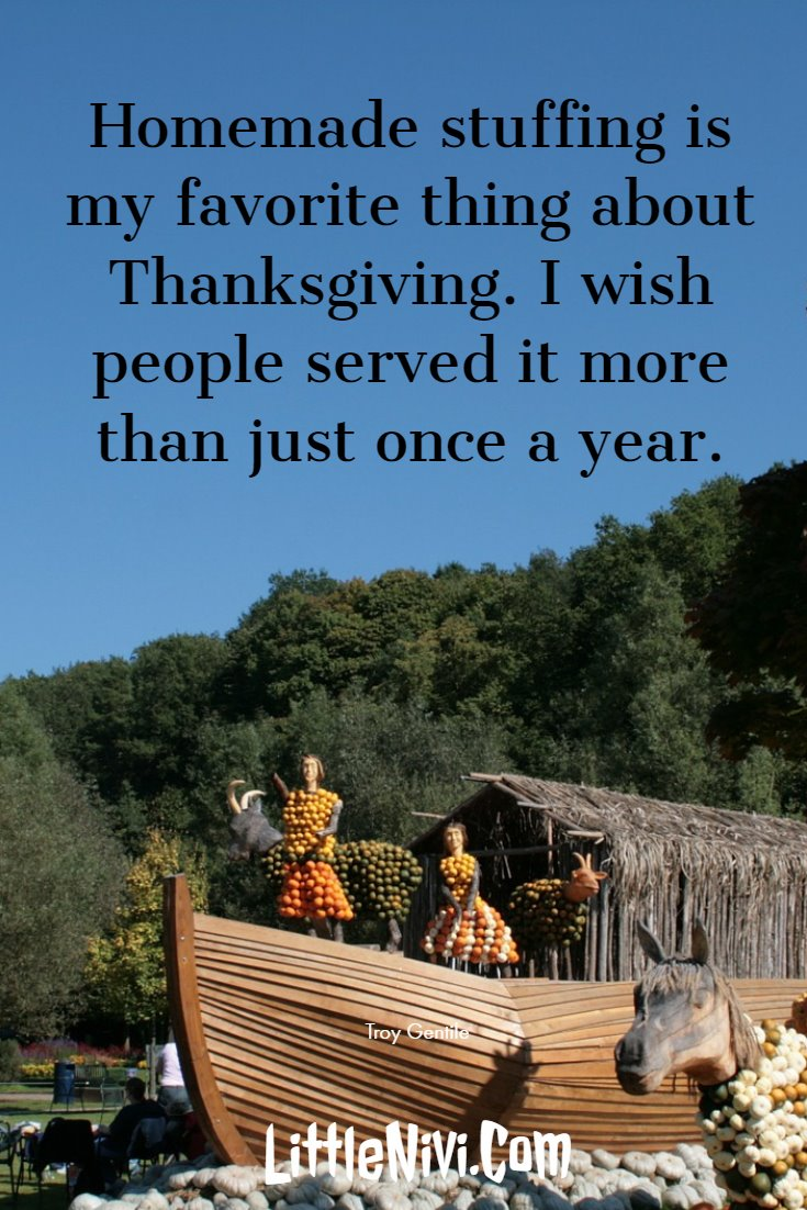 27 Inspiring Thanksgiving Quotes with Happy Images 24