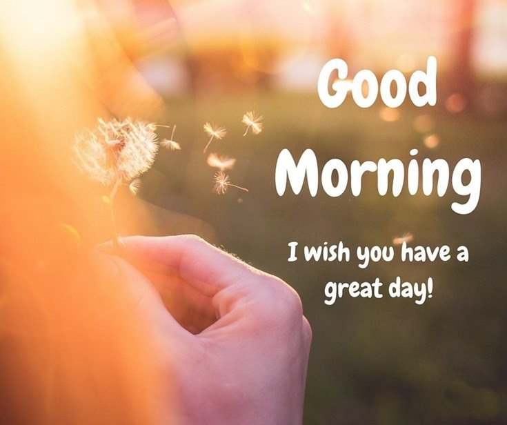 28 Amazing Good Morning Quotes And Wishes With Beautiful Images Littlenivi Com