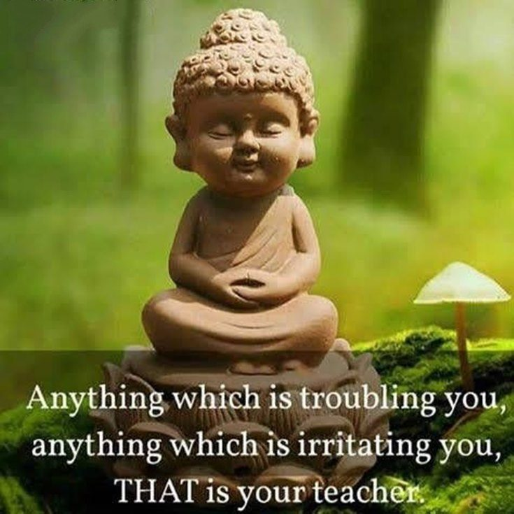 Buddhist quotes positive 48 Calming