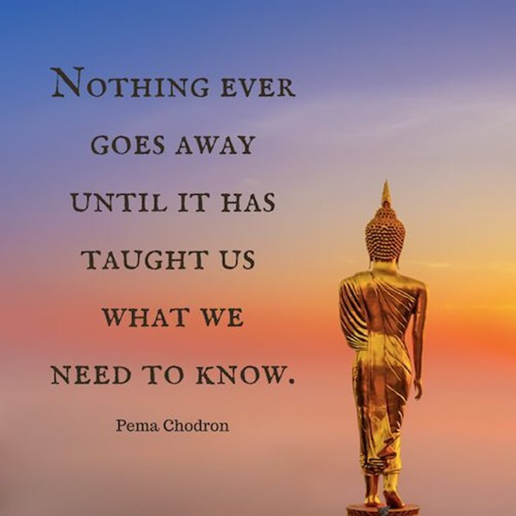 100 Inspirational Buddha Quotes And Sayings That Will Enlighten You 22