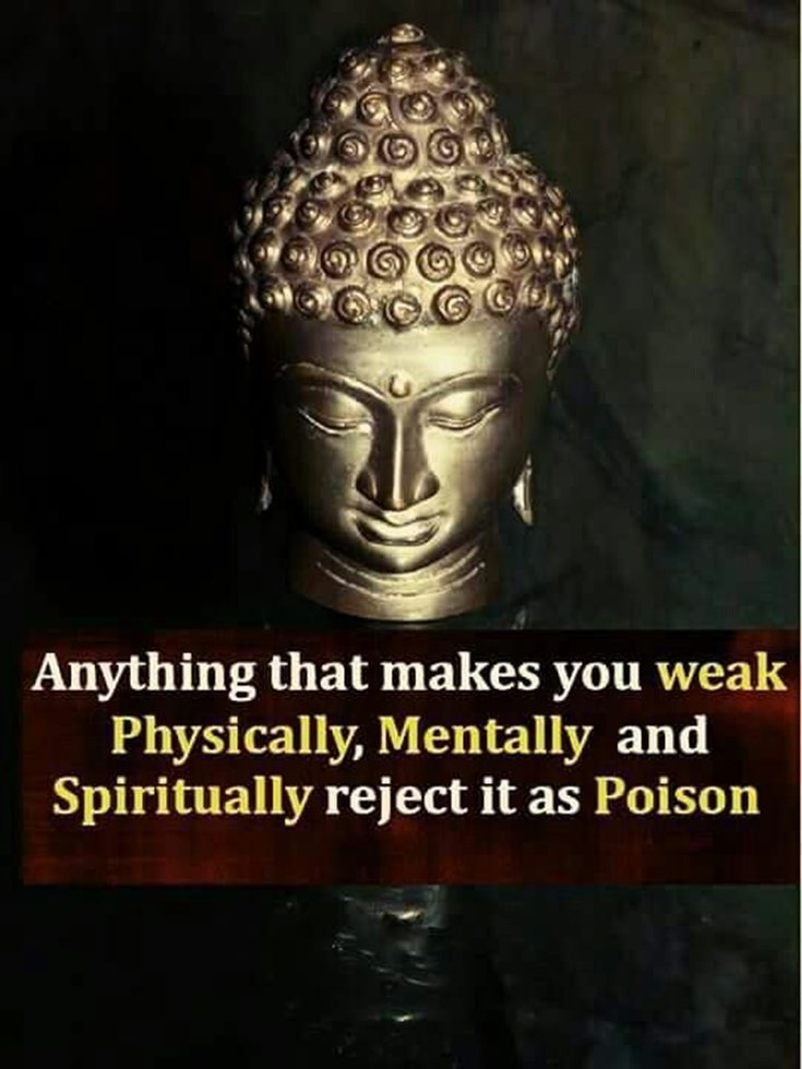 100 Inspirational Buddha Quotes And Sayings That Will Enlighten You 31