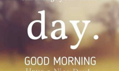75 Happy Morning Quotes with Beautiful Images
