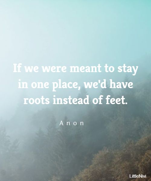 best travel quotes and exploring quotes about journeys 12