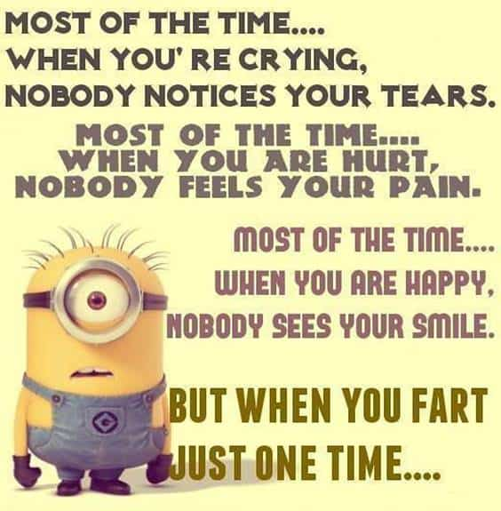 42 Funny Jokes Minions Quotes With Images Funny Text Messages despicable me minions quotes funny texting images