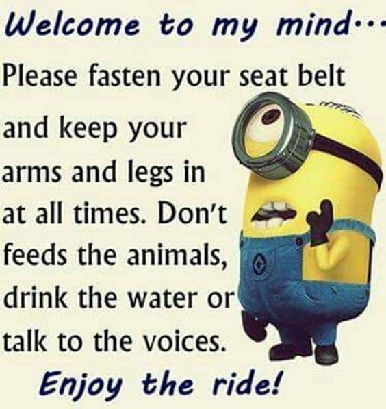 42 Funny Jokes Minions Quotes With Images Funny Text Messages minions captions fun messages