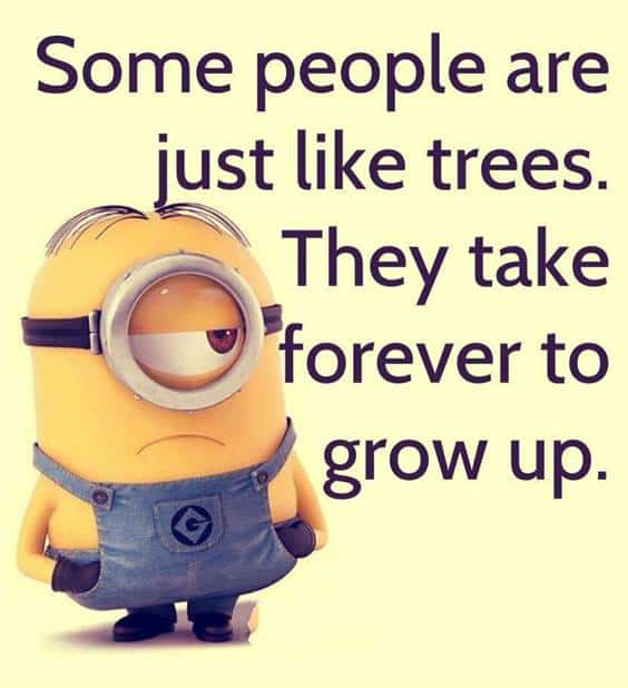 42 Funny Jokes Minions Quotes With Images Funny Text Messages 5