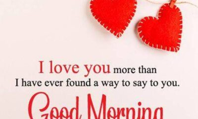 42 Good Morning My Love Quotes images Love Messages 1