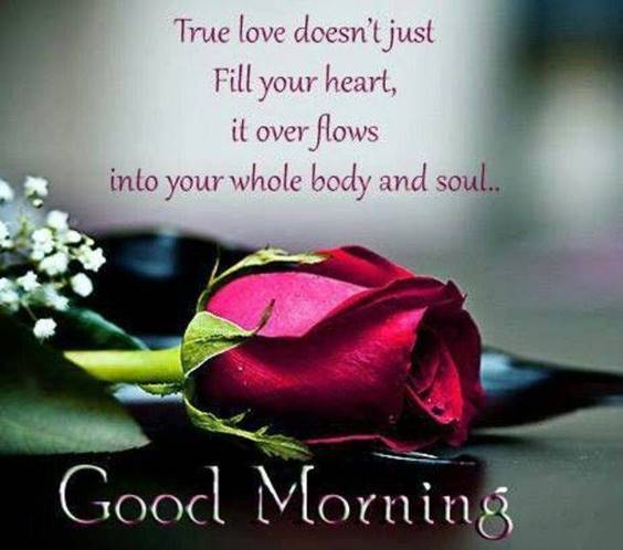 42 good morning my only love greetings love messages