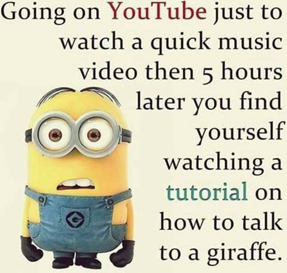 40 Fun Minion Quotes Of The Week sarcastic minion quotes
