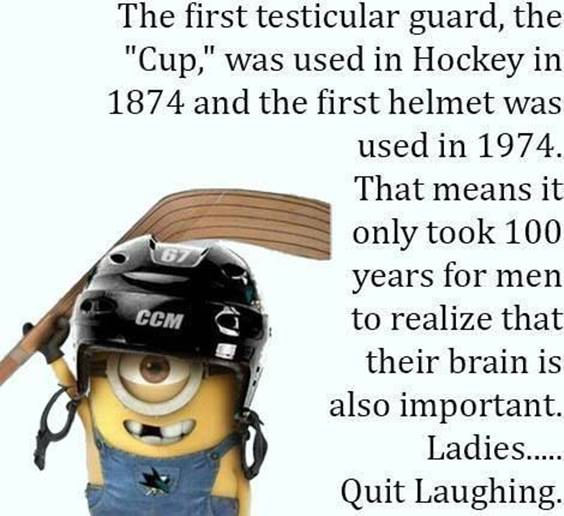 40 Fun Minion Quotes Of The Week 19