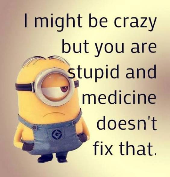 40 Fun Minion Quotes Of The Week 2