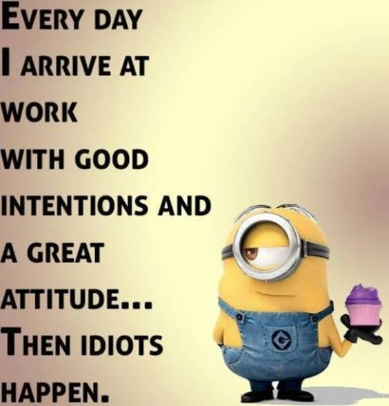 40 Fun Minion Quotes Of The Week minion images quotes on comedy
