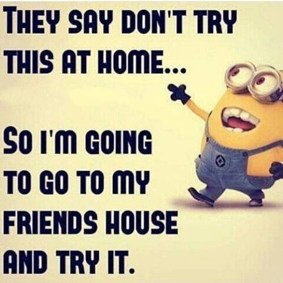 40 Fun Minion Quotes Of The Week minions picture quotes