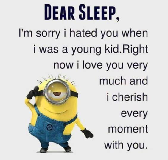 40 Fun Minion Quotes Of The Week minion pics funny memes minions funny sayings