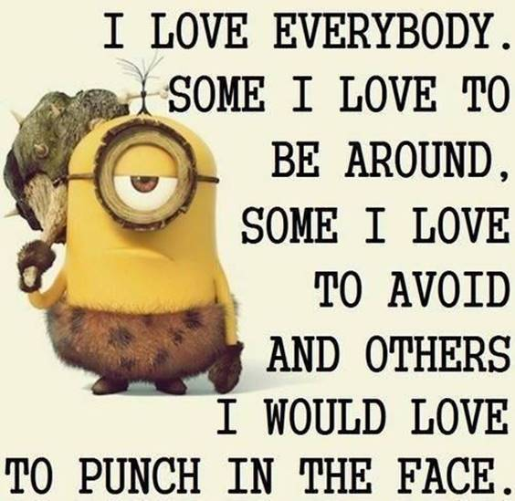 40 Fun Minion Quotes Of The Week 29
