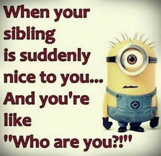 40 Fun Minion Quotes Of The Week 3