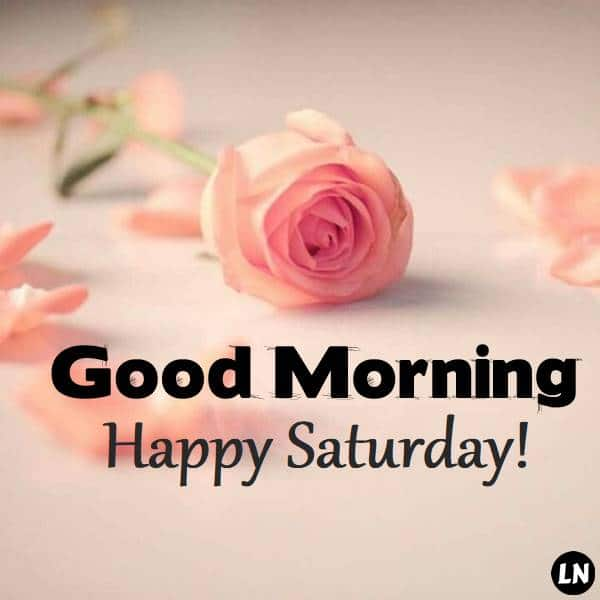 Good Morning Saturday Wishes with Pictures - Motivation and Love