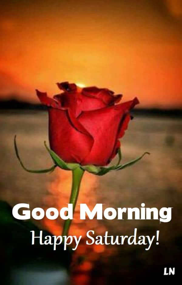 Good Morning Happy Saturday Images - Morning Greetings – Morning Wishes