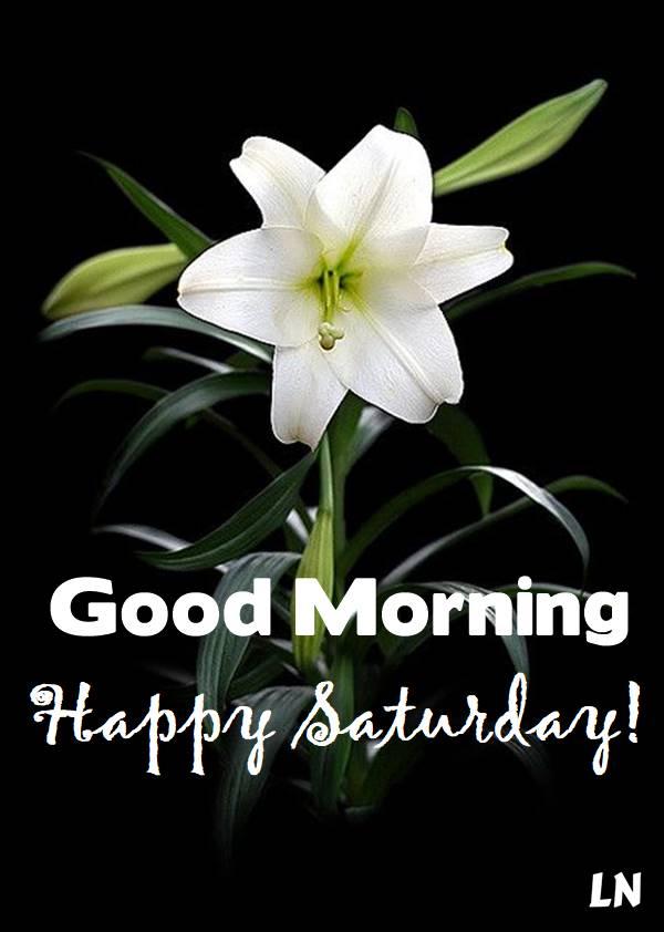 Happy Saturday Good Morning Breakfast Gif good morning saturday saturday quotes good morning quotes