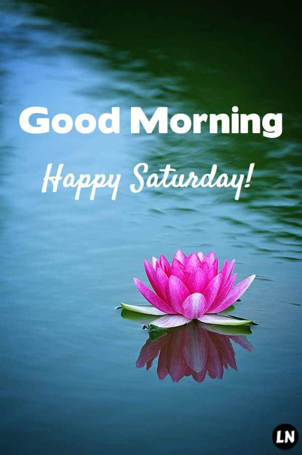 Amazing Good morning Saturday images wishes pics