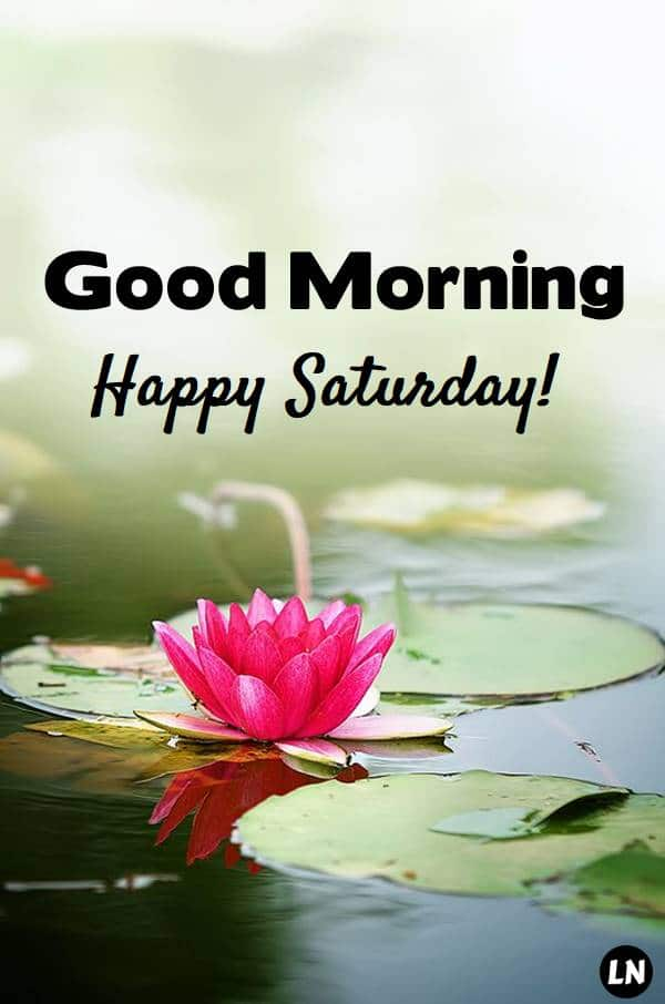 Good Morning Saturday Pictures, Photos, and Images for Facebook, Tumblr, Pinterest, and Twitter