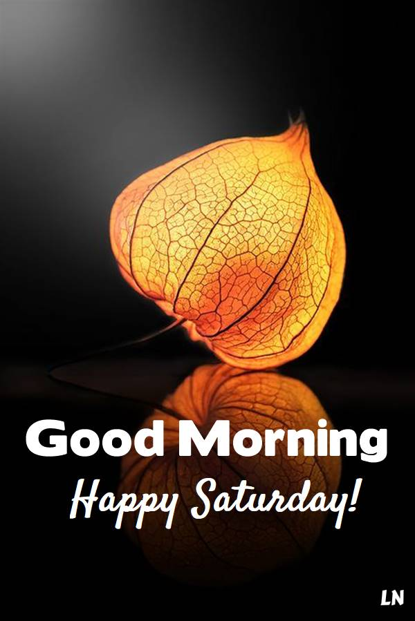 Best Good morning Saturday images - Good Morning Images, Quotes, Wishes, Messages, greetings