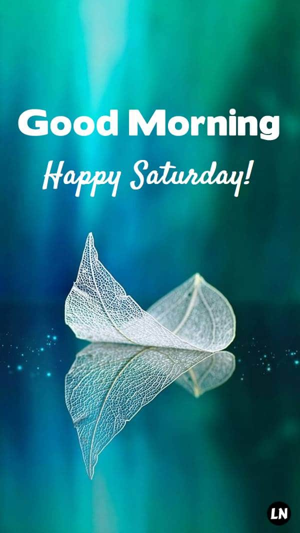 Good Morning Saturday Images, Quotes, Wishes, Wallpaper - Good Morning Images Collection