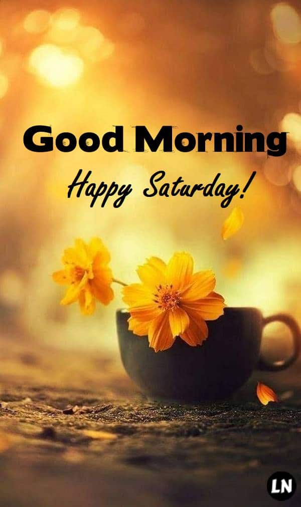 Good Morning Happy Saturday Pictures, Photos, and Images for Facebook, Tumblr, Pinterest, and Twitter