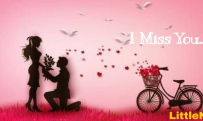 I Miss You Quotes for Her and Him