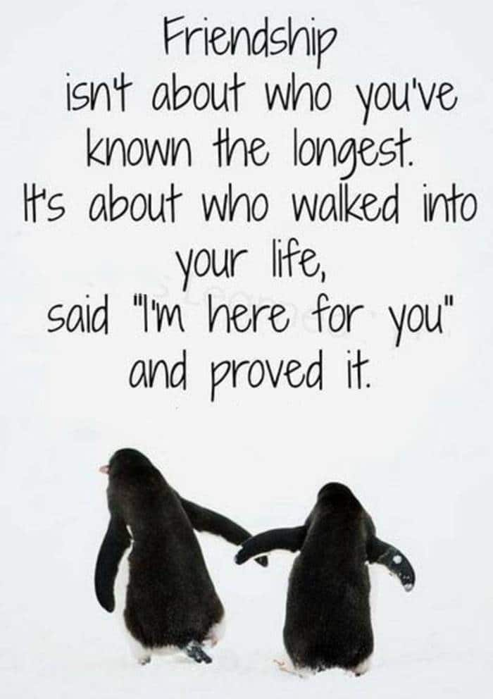 80 Thank You Quotes about Friendship Wishes and Messages | thank you my friend