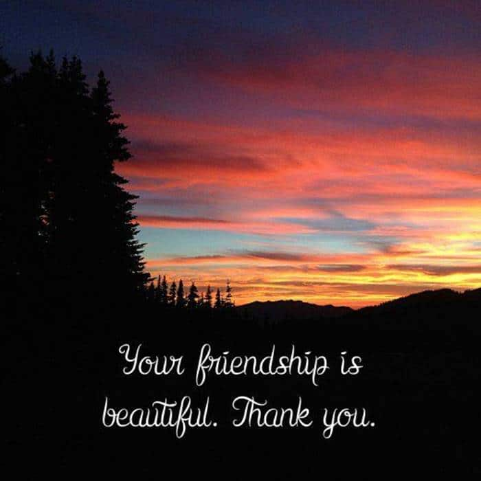 80 Thank You Quotes about Friendship Wishes and Messages | best thank you, thank you for all you do quotes, thank you quotes for students