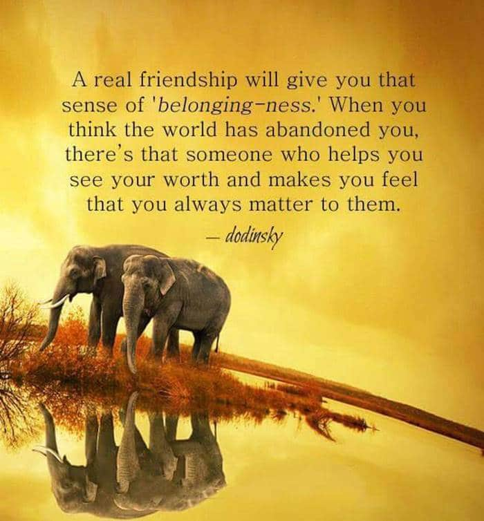 80 Thank You Quotes about Friendship Wishes and Messages | cute thank you sayings, thank you for 2021, funny thank you quotes