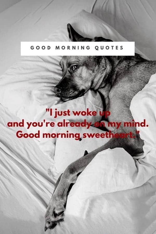 beautiful good morning quotes | good morning baby meme, wonderful day meme, good morning love funny