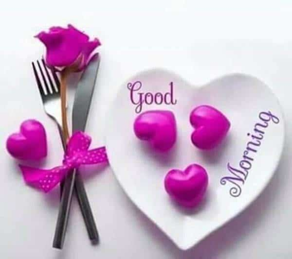 good morning i love you meme   funny good morning images, good mornings images, love messages pictures