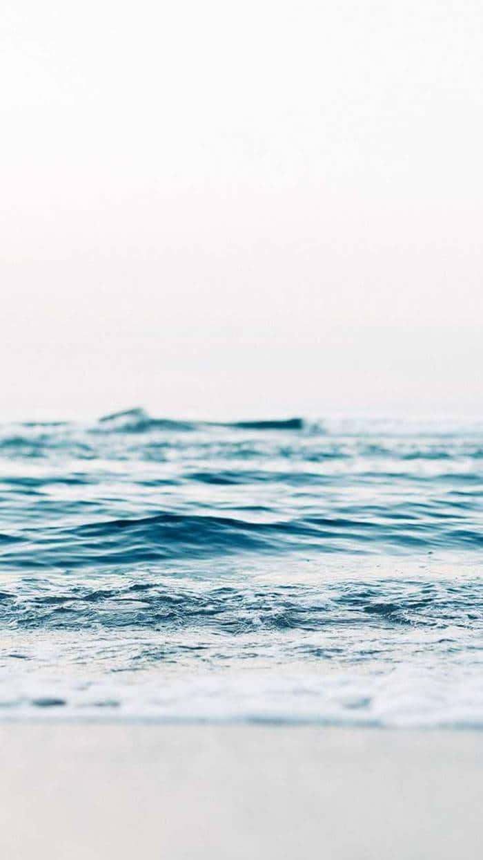 38 iPhone Wallpapers For Ocean Lovers | pink iphone 11 wallpaper, 11 wallpaper, apple stock wallpaper