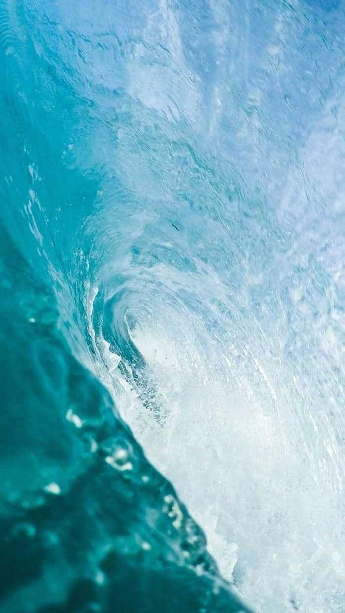 38 iPhone Wallpapers For Ocean Lovers | iphone wallpapers, wallpaper iphone, iphone wallpaper hd