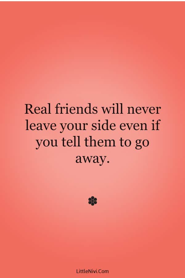45 Cute Friend Quotes Friendship Thoughts | quotes about friends and family, inspirational quotes about friends, be a friend quotes