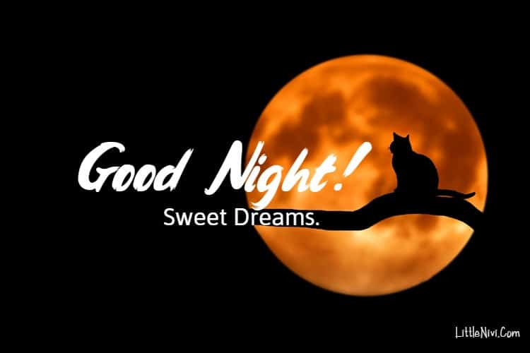145 Heart Touching Good Night Message for Love Ones Sweet Goodnight | good night message, good night message to him, loving good night message