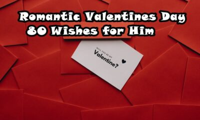 Romantic Valentines Day Wishes for Him