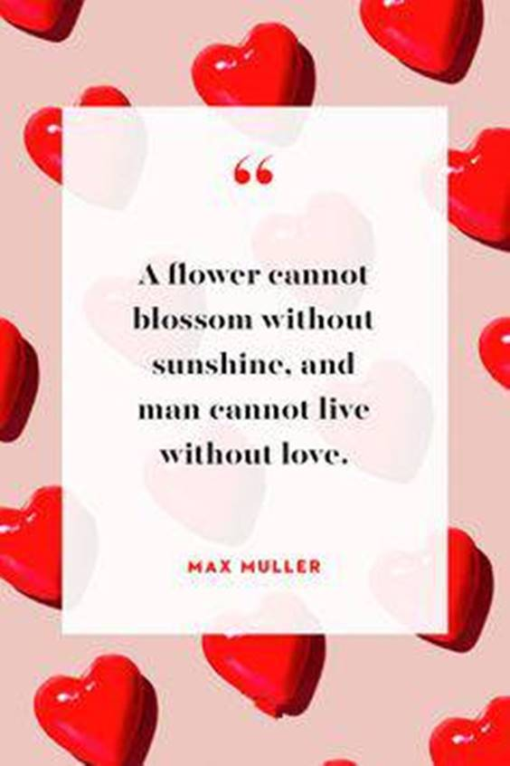 Valentines Day Quotes Single