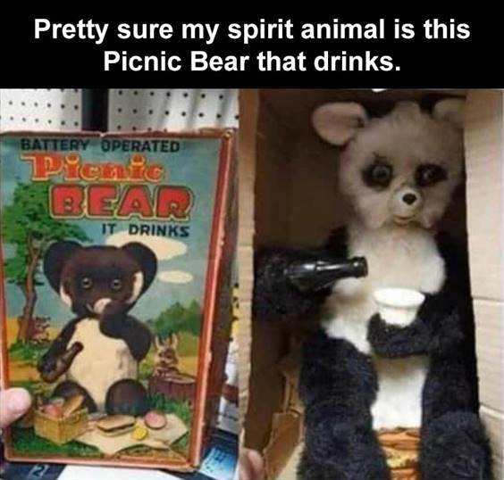 """Top 56 Hilarious Funny Memes Of All Time Funny Humor Memes """"Pretty sure my spirit animal is this picnic bear that drinks."""""""