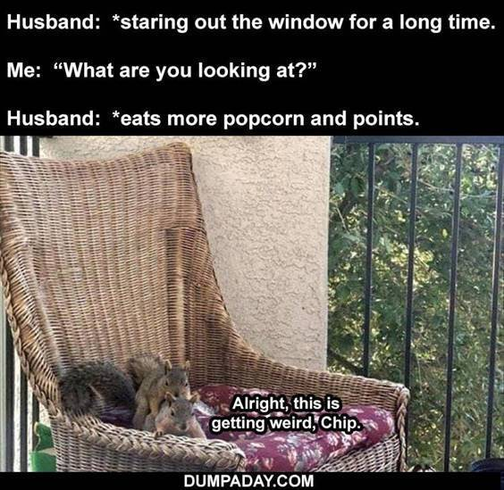 """Top 56 Hilarious Funny Memes Of All Time Funny Help Me Memes """"Husband: *staring out the window for a long time. Me: """"What are you looking at?"""" Husband: *eats more popcorn and points. Alright, this is getting weird, chip."""""""