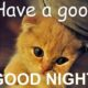 good night memes pictures