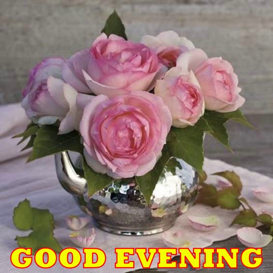 best good evening images gif