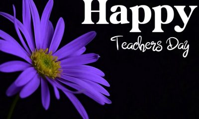 Teachers Day Wishes Messages What to Write in a Teacher Appreciation Card