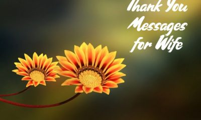 Thank You Messages for Wife And Wishes Appreciation Quotes about Thank You Notes Ever Written