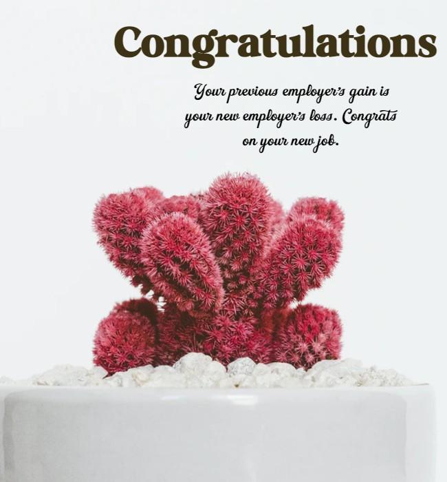 funny congratulations on new job