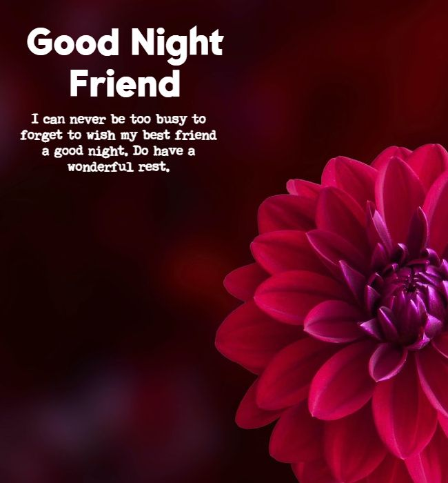good night greetings for friends
