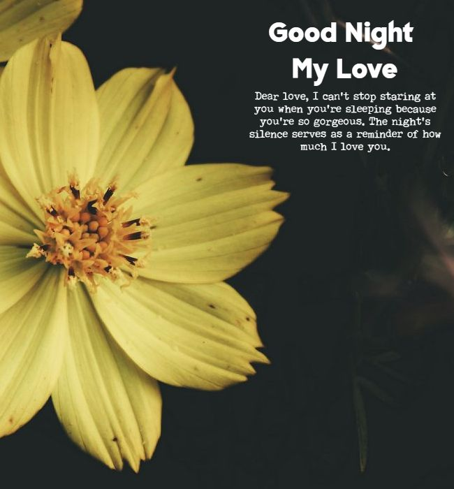 good night love quotes 1