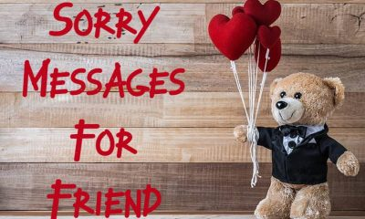 Heart Touching Im Sorry Messages For Friends – What To Write In A Apology Messages Card